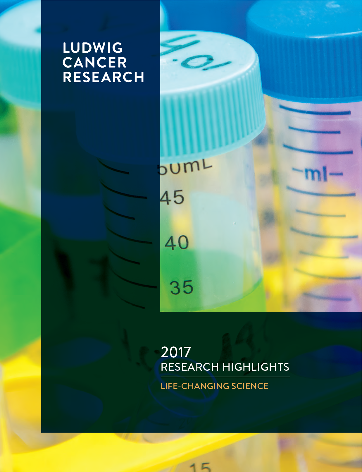 2-17 Annual Research Highlights cover