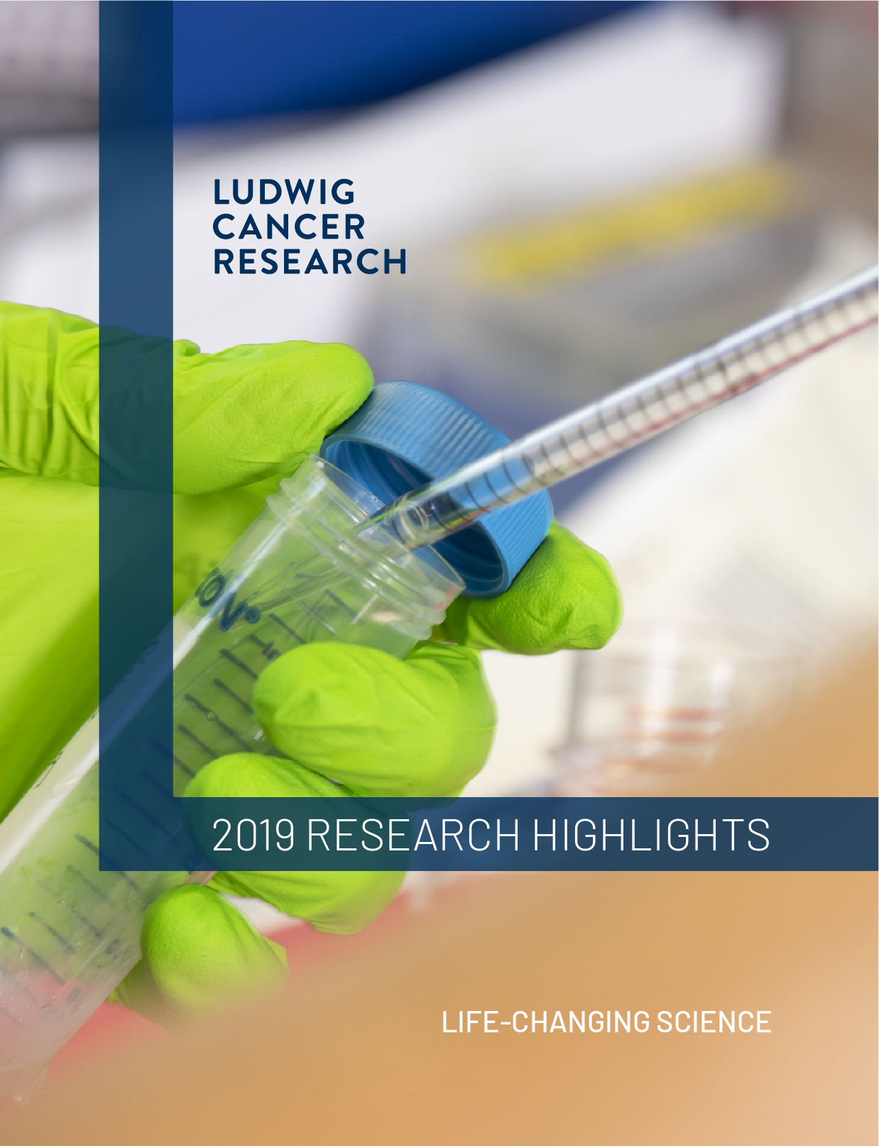 2020 Ludwig Annual Research Highlights report cover